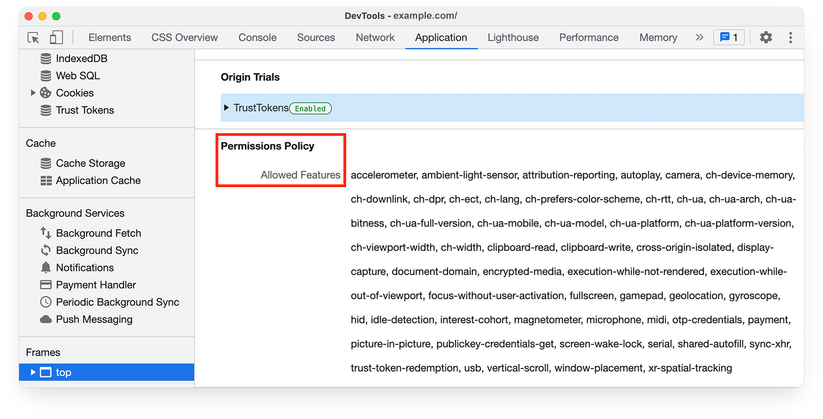 Chrome DevTools    Application panel, showing Permissions Policy Allowed Feature
