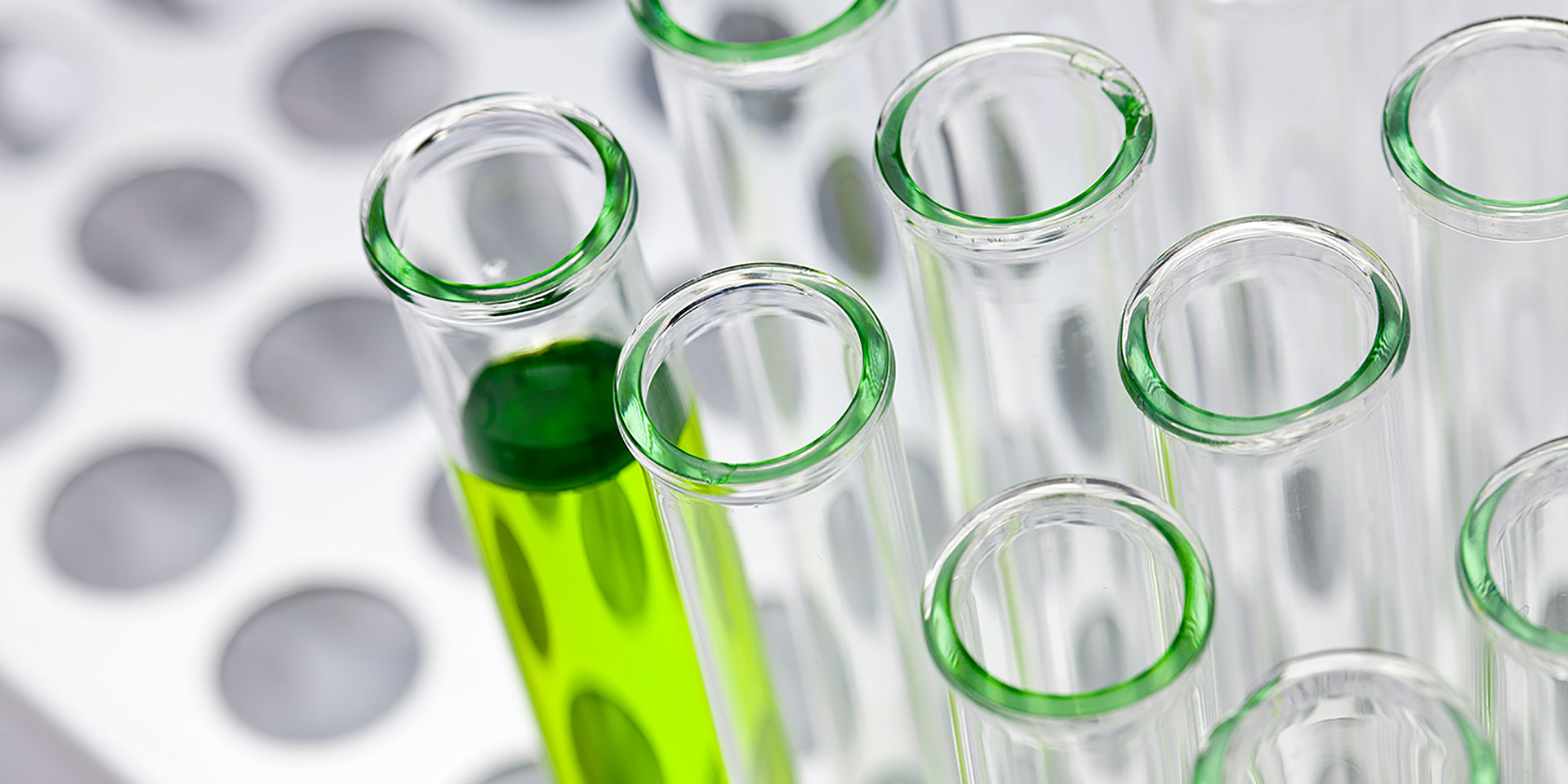 Test tubes in a metal rack, one containing clear green liquid.